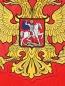 Лонгслив с принтом Sochi 2014  –  Деталь