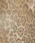Сорочка из шелка с анималистичным принтом Grazia'lliani  –  Деталь